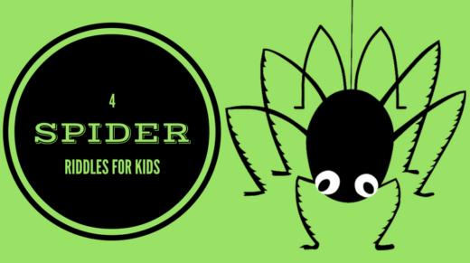 Spider Riddles For Kids