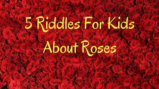 5 Roses Riddles For Kids