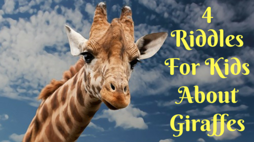 4 Giraffe Riddles For Kids