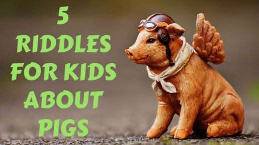 5 Pig Riddles For Kids
