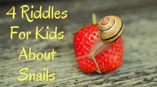 4 Snail Riddles For Kids