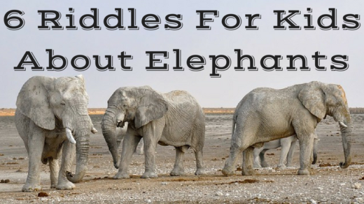 6 Elephant Riddles For Kids