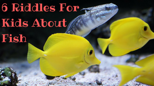 6 Fish Riddles For Kids