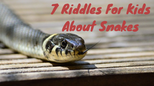 7 Snake Riddles For Kids