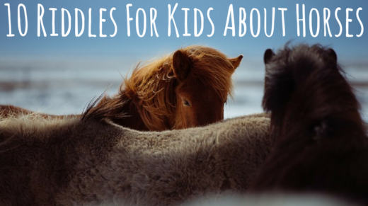 10 Horse Riddles For Kids