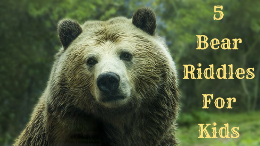 5 Bear Riddles For Kids