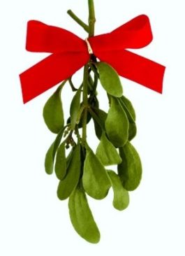 Mistletoe Riddles