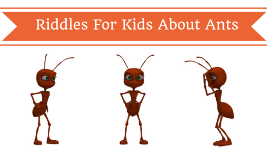 Ant Riddles For Kids