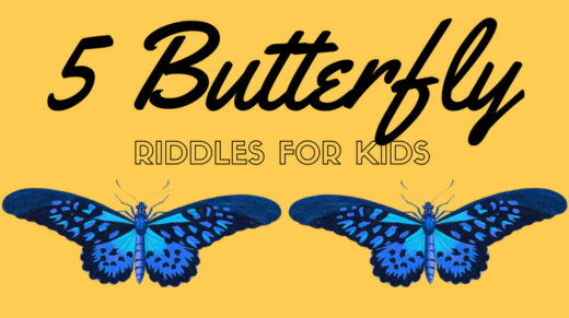 Butterfly Riddles For Kids