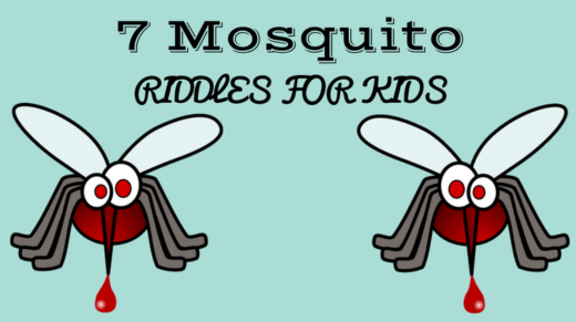 Mosquito Riddles For Kids