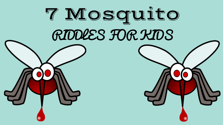 Mosquito Riddles