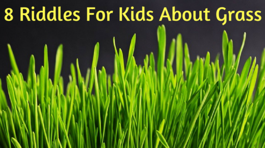 Grass Riddles For Kids